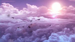 خلفيات فيديو للمونتاج جولة في السماء مع الطيور Youtube