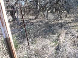 Double Fences For Deer Forest Garden Forum At Permies