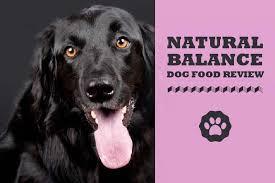 natural balance dog food review 2020