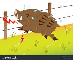 Wild Boar Which Got Shocked By Stock Vector Royalty Free 510189784