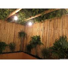 8 Ft W Rolled Bamboo Fence Panel In 2020 Bamboo Fence Fence Panels Fence Design