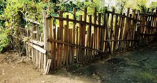 Grape Stakes For Sale Page 2 Redwood Grape Stakes Redwood Fencing Rustic Furniture 831 601 0619
