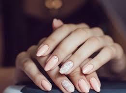 ultimate nail technician professional