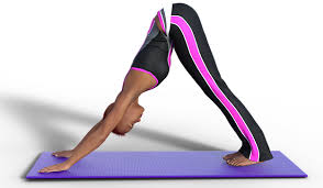 top 5 yoga poses for beginners my