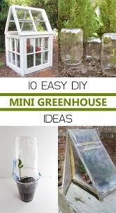 easy diy mini greenhouse ideas