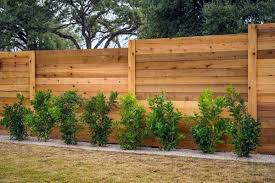 Affordable Ways To Create Privacy In Backyards Hatch Homes