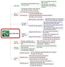 BLOG SINH HỌC - THPT NGUYỄN SINH SẮC - TÂN CHÂU - AG: SƠ ĐỒ TƯ DUY