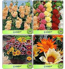 flower seeds seed catalogs combo