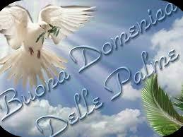Domenica delle Palme: Misericordia è ..... Servizio - ATNews.it