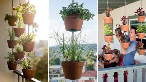 hanging clay pots for your plants