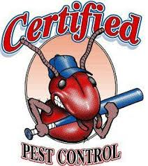 34+ Pest And Termite Control PNG