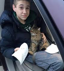 14 Year Old Boy Jumps Into Traffic To Save Cat After It S Thrown From Meowingtons
