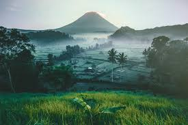 bukit cinta bali a reliable guide our taste for life