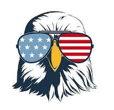 Magnetic American Flag Freedom Eagle Usa Car Decal Magnet 5 5 Ebay