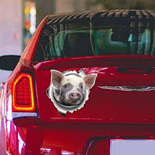 Amazon Com Pig Car Decal Car Bumper Sticker Vinyl Sticker For Cars Windows Walls Fridge Toilet And More 6 Inch Home Kitchen