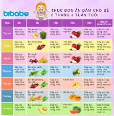 Thực đơn ăn dặm truyền thống cho bé 6 tháng - Tuần 4 (Dành cho bé ăn dặm  tích cực - Ngày ăn 1-2 bữa) - bibabo.vn
