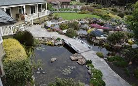 gravel in a koi pond sweeer