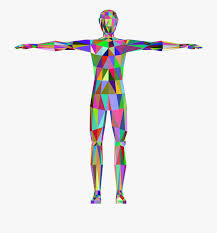 Large Human Body Clipart - Low Poly Human Body , Transparent ...