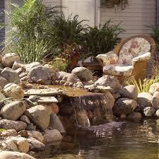 how to build a low maintenance pond