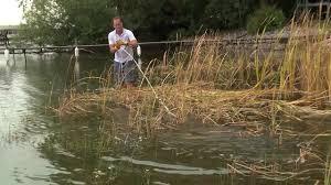 using weedrazer tools lake rake you