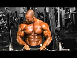 chest workout muscle how to gain muscle