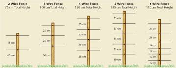 Electric Fencing Cattle Fencing Fences For Cows
