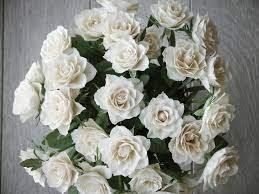 صور بوكيه ورد أبيض أجمل صور بوكيهات باقات الورد الأبيض روزبيديا