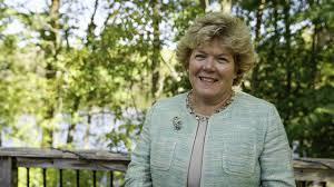 Ann Johnson Stewart announces run for Senate District 44 seat in 2020 |  Lake Minnetonka News | swnewsmedia.com