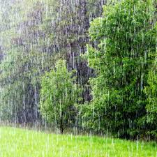 What Causes Rain | How Is Rain Formed | DK Find Out