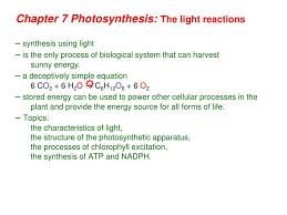 photosynthesis equation including atp