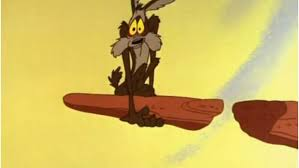 Image result for wile e coyote