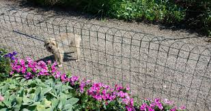 Dog And Cat Deterrents Keep Pets Out Gardener S Supply
