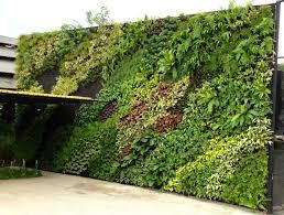 fake wall hang plant green wall for