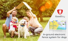 Amazon Com Goodboy Electric In Ground Dog Fence Wireless Invisible Perimeter System With 2 Collars Best For Safe Hands Off Dogs And Pets Containment 20 Lbs Pet Supplies