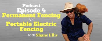 Permanent Fencing Vs Portable Electric Chicken Fencing With Shane Ellis Episode 4 Greengrasseggfarming