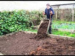 prepare raised beds for growing