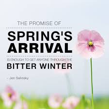 our favorite spring quotes blog