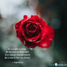 best rainforest quotes status shayari poetry thoughts yourquote