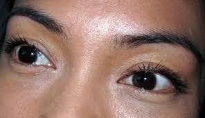 l oreal extra volume collagen mascara