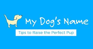 elegant dog names for dogs