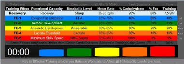 the human metabolism for peak