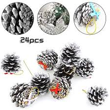 beautymood 24 pcs natural pine cone