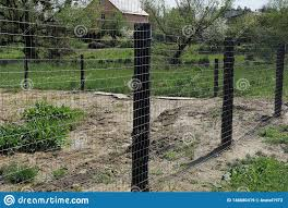 A Fence Of Gray Metal Mesh And Black Pillars Outside In Green Grass Stock Image Image Of Mesh Detail 146680419