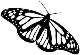 Amazon Com Monarch Butterfly Decal Sticker Black Decal Sticker Vinyl Car Home Truck Window Laptop Computers Accessories