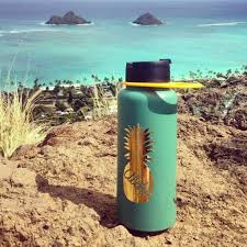 Hydro Flask Stickers Custom Decals For Your Hydroflask Pineapple Stickers Custom Name Sticker Hydroflask Stickers Decorated Water Bottles Water Bottle Stickers