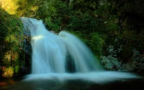 waterfall backgrounds that move on