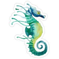 Seahorse Stickers Car Decals High Quality Vinyl Material