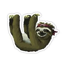 Sloth Sticker Laptop Stickers Vinyl Decal Laptop Phone Tablet Vinyl Decal Car Window Bumper Sticker Wish