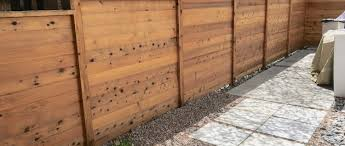 Wooden Fence Colors That Will Wow Your Neighbors Denver South