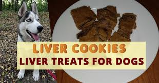 liver treats for dogs husky advisor